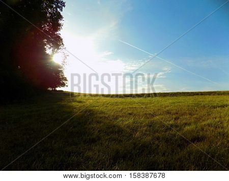 Sunrise in wild nature over meadow and deciduous forest
