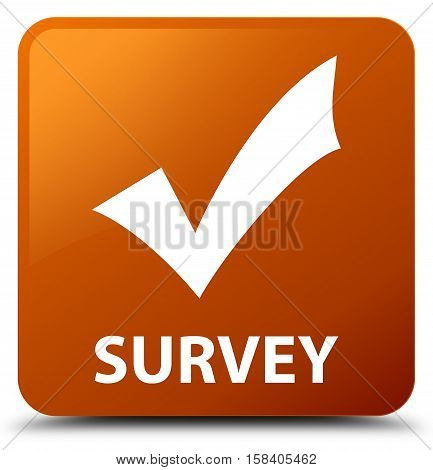 Survey (validate icon) on brown square button