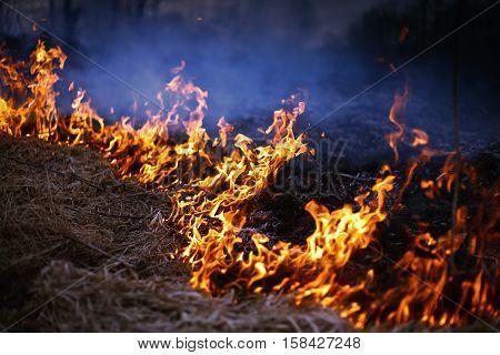 A spring fire. Burning grass. Field Smoke Background