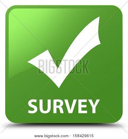 Survey (validate Icon) Soft Green Square Button