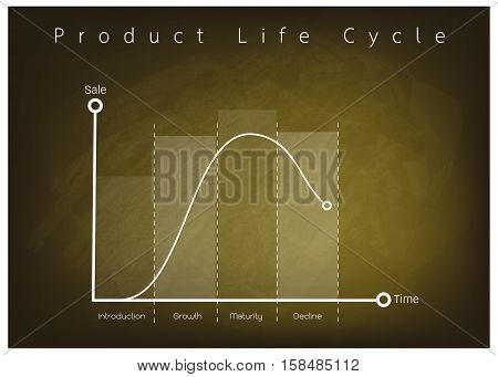 Business and Marketing Concepts 4 Stage of Product Life Cycle Chart on Green Chalkboard.
