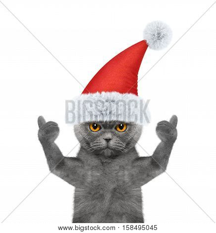 Santa cat showing thumb up and welcomes -- isolate on white