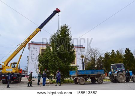 Dismantling The Christmas Tree
