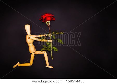 Red rose and figure wooden man on black background