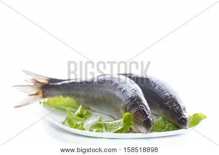 whole salted herring with lettuce on a plate