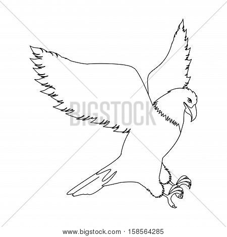 contour eagle in hunting position vector illustration