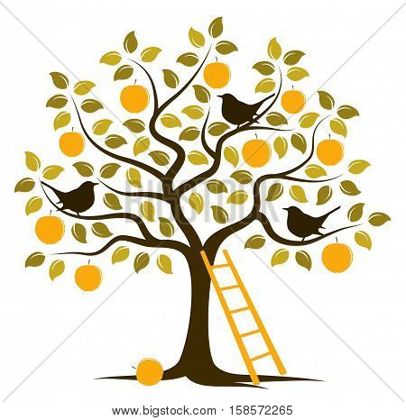 vector apple tree with birds and ladder isolated on white background