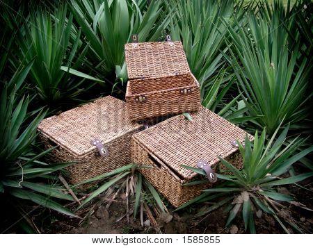 Seagrass Storage