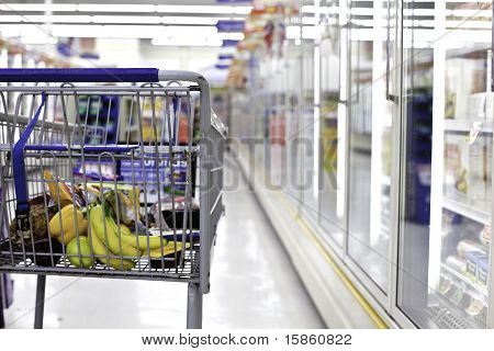 Grocery Shopping Cart