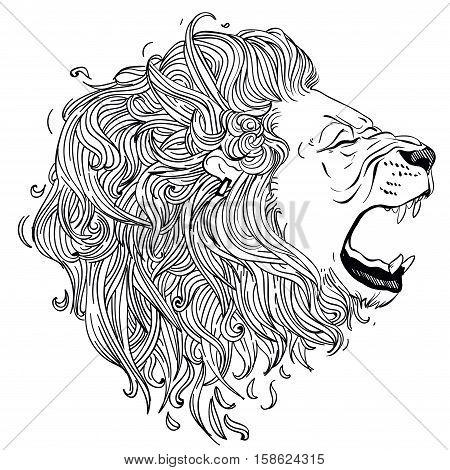 lion vector head. lion hand drawn gnarling profile