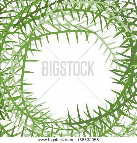 Algae Frame. Leading Grass Background. Place For Text
