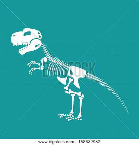 Dinosaur Skeleton Isolated. Remains Of Tyrannosaurus. Skull T-rex. Prehistoric Monster. Ancient Rept