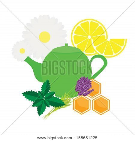 Teapot with herbals and fruits. Green Tea kettle vector illustration icon isolated design element