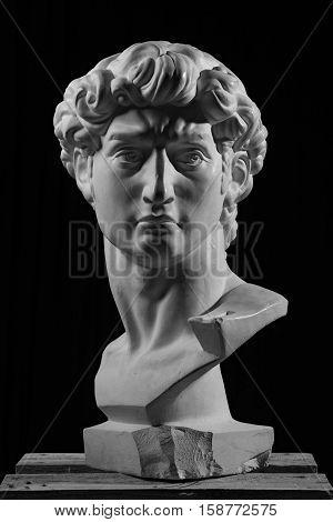 gypsum head of Michelangelo's David on a black background