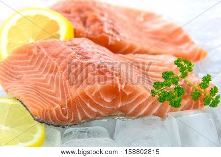 Fresh Salmon fillet with parsley and lemon in ice.