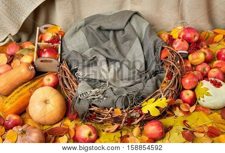 nest of twigs with a blanket on autumn yellow fallen leaves, apples, pumpkin and decoration on textile