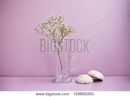Flower And Two Zephyrs