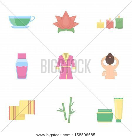 Spa set icons in cartoon style. Big collection of spa vector symbol stock