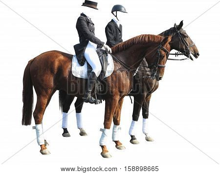 Dressage Rider Man And Woman With Two Horses Isolated On White