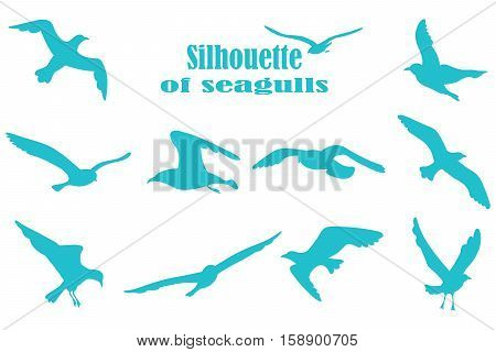 bird silhouettes on a white background. Icons gulls. Vector.
