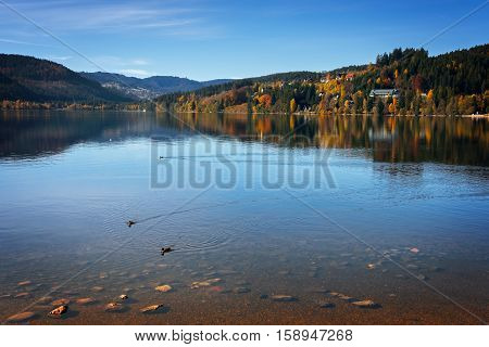 Lake Titisee in the sunny and quiet autumn day, Germany