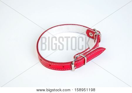 Leather red dog collar on a white background
