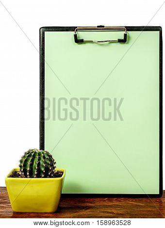 Cactus on the desk near the greenish board isolated on white background