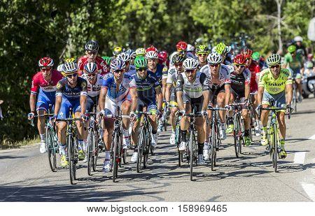 Mont Ventoux France - July 142016: The peloton riding on the road to Mont Ventoux during the stage 12 of Tour de France 2016.