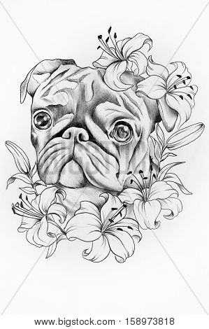 Sketch of purebred dogs in the colors of white background.