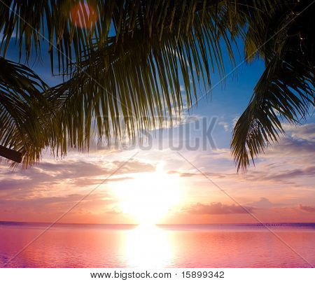 Sea Sunset Outdoor