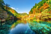 Colorful Autumn Forest Reflected In The Five Flower Lake poster