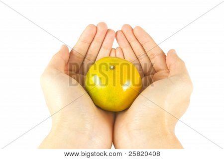 Give Fresh Orange