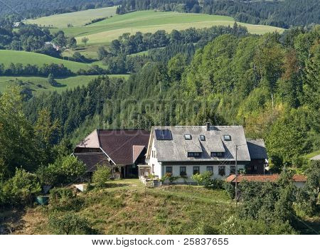 Black Forest Scenery At Summer Time