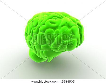 Cérebro 3D
