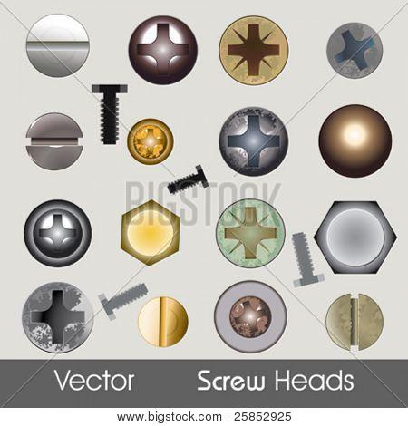 Vector Screw Heads