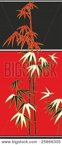 bamboo, cane