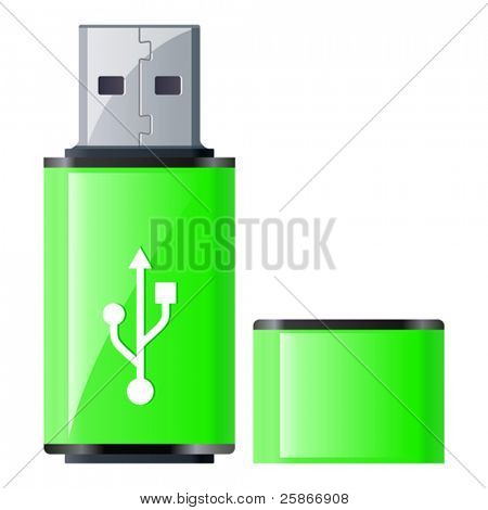 vector illustration of USB Flash Drive