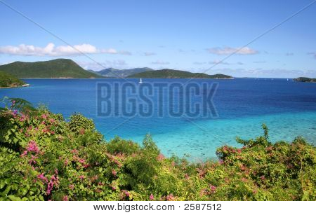 Leinster Bay Vista