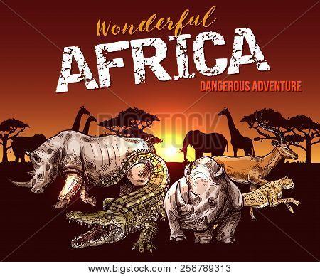 African Animals Elephant Giraffe And