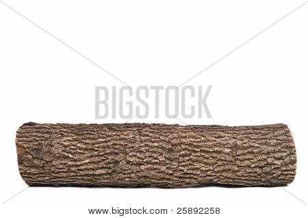 Close-up of Isolated stub log with wooden texture