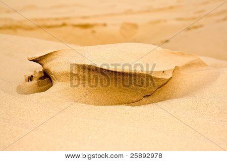 Sandy dunes in desert