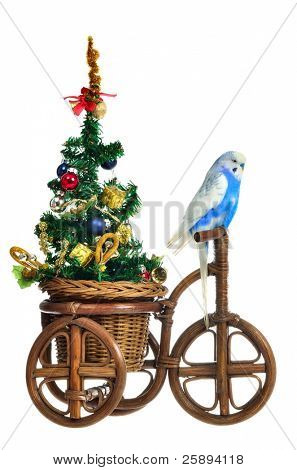 Budgerigar carrying new year tree on the tricycle, isolated