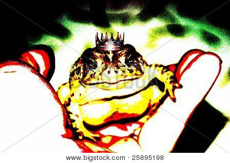 In my hand I hold a Prince Toad, (no idea where he got that neat crown) in a pop art version