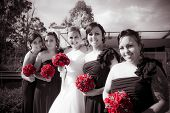 stock photo of oblique  - Lineup Of Bride And Bridesmaides In A Formal Wedding Photo - JPG