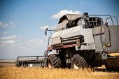 Combine Harvester Agriculture Machine Harvesting Golden Ripe Wheat Field. Agriculture poster