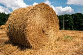 Hay After Harvest, Stacks Of Straw Bales Of Hay, Farm Farm Fields With Harvested Crops. poster
