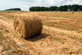 A Haystack In The Field After Harvest Harvested poster