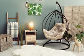 Elegant Living Room Interior With Hanging Armchair And Fuzzy Rug poster