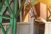 Plant For Processing And Storing Grain, A Truck Is Loaded With Grain, Close Up, Loaded Crop poster