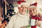 Cheerful Glancing Elderly Twosome Celebrating Christmas Together poster